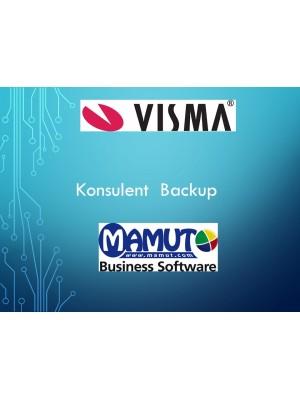 Konsulent Service Backup