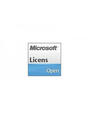 Microsoft Windows Small Business Server 2011 Premium Add-on CAL Suite - lisens